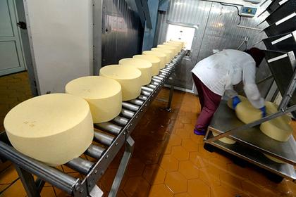 Власти Подмосковья анонсировали запуск заводов сырного кластера