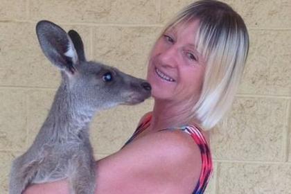 Трое австралийцев достаточно серьезно  пострадали при нападении кенгуру