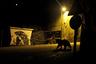 Итальянский фотограф Марк Коломбо заметил движение в тени, когда ехал через деревню в национальном парке Абруццо, Лацио и Молизе. Он рассудил, что вряд ли у дороги прячется олень — слишком поздний час. Значит, апеннинский бурый медведь — очень редкий подвид, совершенно не агрессивный и сторонящийся людей. Коломбо остановил машину и выключил фары. Через несколько минут его предположение подтвердилось. Фотограф едва успел поменять объектив.