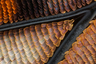 Чешуйки на крыле императорской бабочки Charaxes sp. Иссакуа, штат Вашингтон (США).