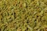 Создание коньяка начинается с бережного возделывания виноградников Араратской долины, залитой солнцем 300 дней в году. Ярким вкусом коньяки обязаны не только уникальному климату, но и разнообразию местных почв и сортов винограда. Каждый сентябрь фермеры и их семьи всего за несколько недель вручную собирают весь урожай.