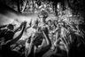 Танец Кечак является формой балийской музыкальной драмы, возникшей в 1930-х годах. Это популярное представление, в котором поющие мужчины впадают в своеобразный транс. Корнями танец восходит к местным экзорцистским ритуалам.