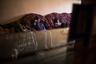 Дочери Лусине — 11-летняя Карине и 9-летняя Сюзанна. После школы они возвращаются в свою комнату, где живут всей семьей.