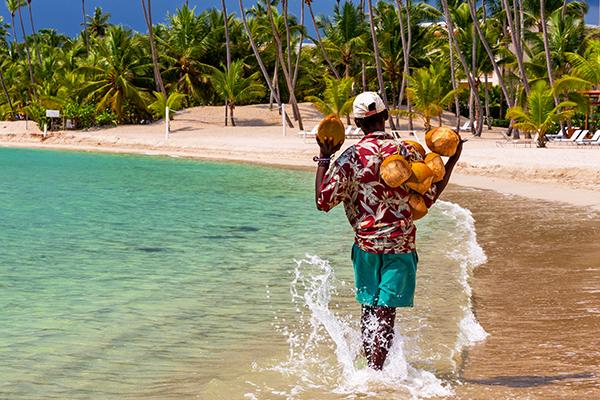 Марихуаны в доминикане легализация марихуаны что это