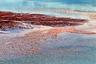 Соленое озеро Борогия в Кении — настоящее царство фламинго. Здесь обитает одна из крупнейших в мире популяций малого фламинго: их число может достигать двух миллионов особей. Итальянский фотограф и путешественник Франко Каппеллари назвал свою работу «Миллион фламинго», хотя на самом деле за нескончаемым розовым потоком скрываются еще более ста других видов птиц, но их не видно.
