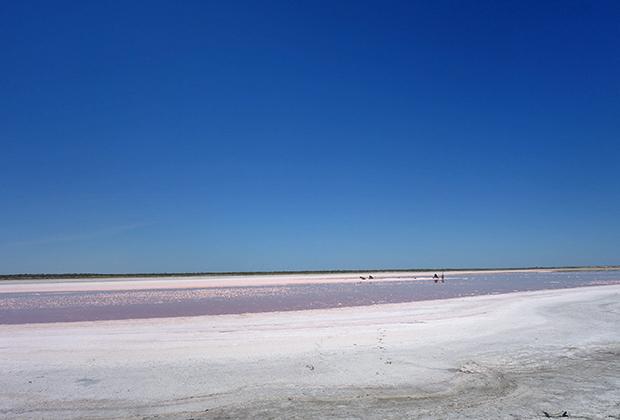 Вода, соль, песок, камни — пейзаж на бывшем дне моря весьма разнообразный и меняется достаточно быстро.