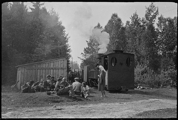 Оккупация Польши началась в 1939 году после того, как немецкие захватчики примерно за месяц, начиная с 1 сентября, разгромили силы сопротивления. В октябре-ноябре была создана немецкая администрация — генерал-губернаторство, которое управляло полицией, железными дорогами, а позднее — концентрационными лагерями.