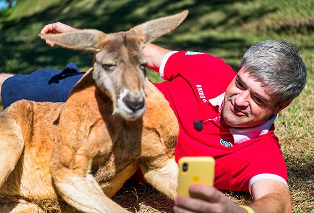 Селфи с кенгуру в Австралии