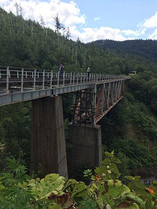 Мост и тоннель находятся в отличном состоянии, но поезда на этом участке железной дороги давно не ходят. Тем не менее посмотреть на мост ежегодно приезжают тысячи туристов: как россиян, так и японцев.