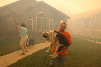 Жителей Калифорнии оставили без предупреждения о пожаре