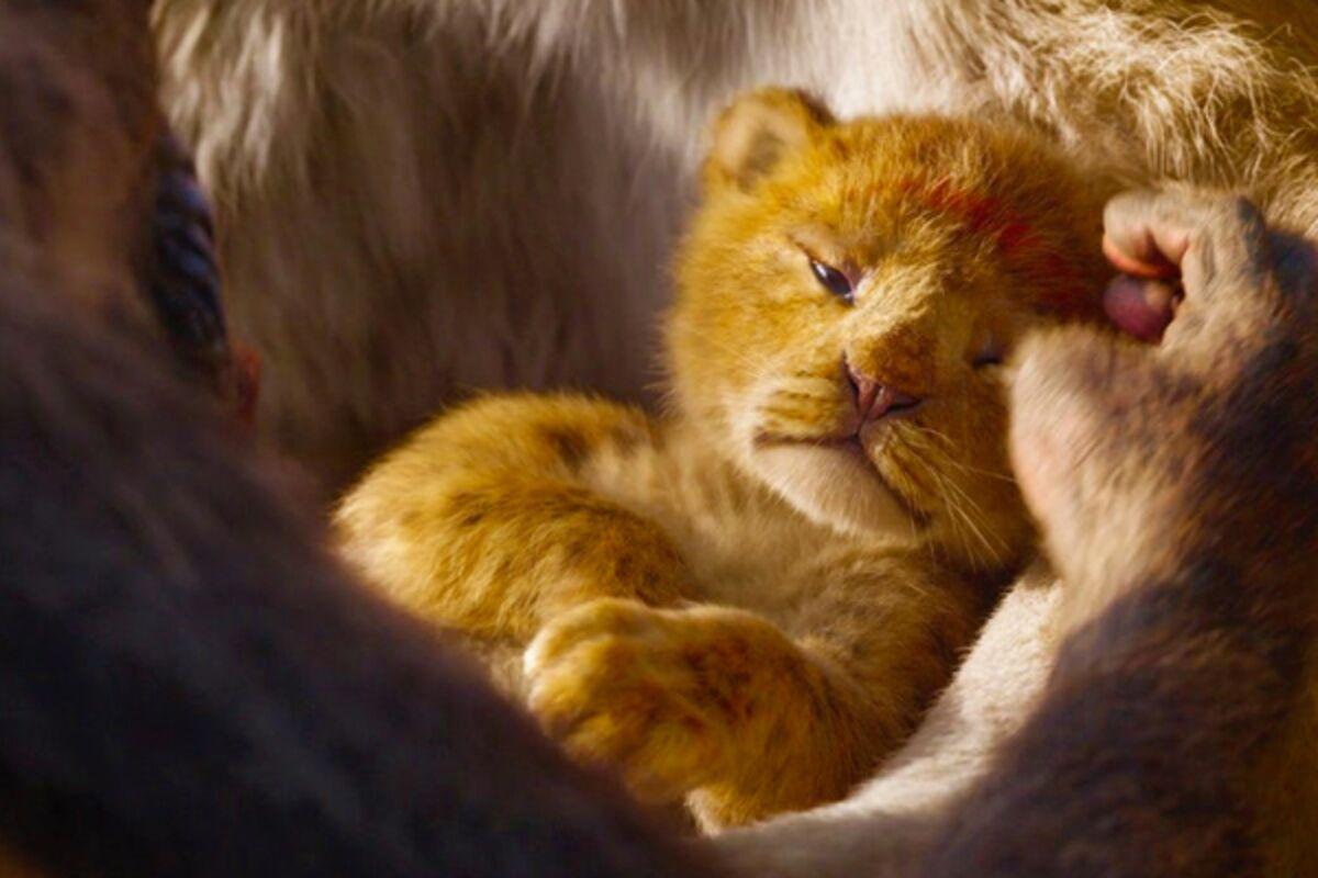 Тизер-трейлер «Короля Льва»: да, это свершилось!