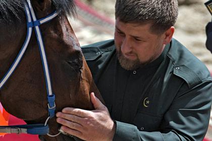 Скакуны Кадырова обогнали хозяина по доходам