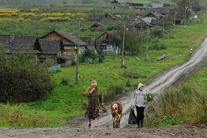 Фото: Александр Паниотов / РИА Новости