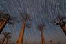 В то время, когда примерно треть населения мира больше не может видеть Млечный Путь невооруженным глазом из-за светового загрязнения, Мадагаскар остается изолированным раем, которому чужда такая проблема. Это 47-минутная экспозиция неба над знаменитой «аллеей баобабов», где произрастают деревья возрастом 800 лет.