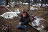 Шестилетняя представительница исчезающего племени монгольских оленеводов — цаатанов. Последние годы цаатаны вынуждены усиленно бороться за национальную идентичность. В 2012 году монгольское правительство включило часть их пастбищных угодий в состав национального парка. Это было сделано для защиты экосистемы, но решение больно ударило по зависящему от этих мест племени цаатанов.