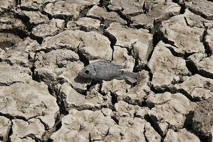 Предсказана глобальная нехватка питьевой воды