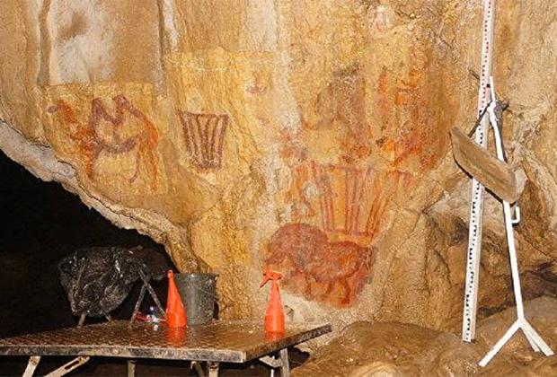 Изображение верблюда в Каповой пещере эпохи верхнего палеолита