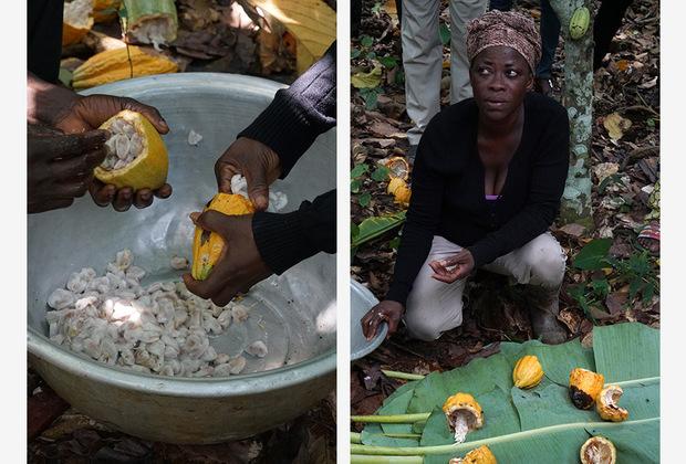 Мадам Акуоли — женщина-фермер. Каждый день она просыпается в 4:30 утра, готовит шестерым детям завтрак и отправляет их в школу. Затем ее ждут дела по хозяйству, а уже в семь утра Акуоли вовсю трудится на плантации, выполняя совсем не женскую работу. К 11 часам фермерша возвращается домой, чтобы успеть сделать обед к приходу детей из школы. Когда все наконец сыты, Акуоли снова идет на ферму срубать плоды какао и выскабливать из них бобы. Домой она приходит только спустя пару часов, готовит семье ужин и ложится спать, ведь завтра очередной подъем в 4:30 утра.