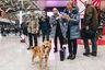 Сулимов много лет сотрудничает с кинологической службой «Аэрофлота» в качестве консультанта. За это время породная группа была значительно усовершенствована: собаки стали более лояльными к людям и мотивированными на поиск.