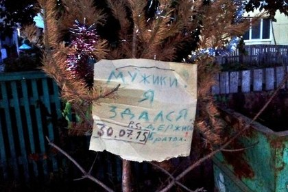 Названо число готовых продержать елку до лета россиян