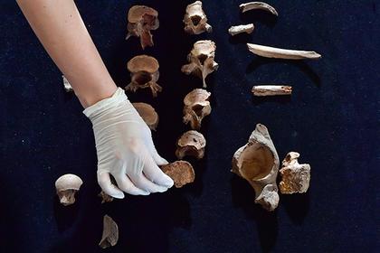 Найдены следы самого древнего политического убийства
