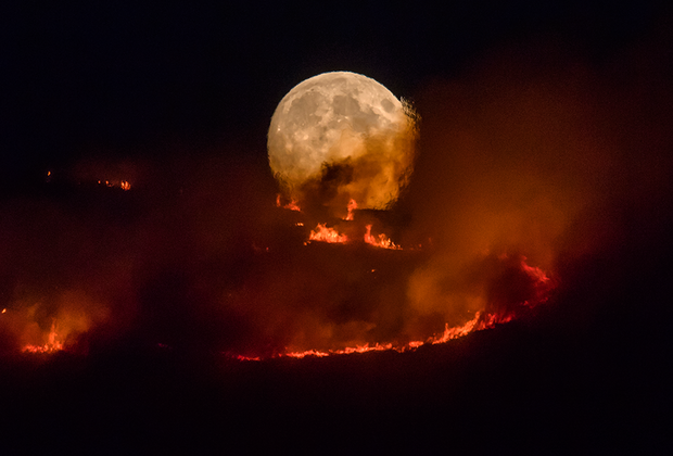 Лесной пожар в графстве Большой Манчестер, Великобритания. Над пылающей вересковой пустошью встает полная луна. Снимок сделан 26 июня 2018 года в городе Стейлибридж.