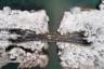 Китайский город Ханчжоу с высоты птичьего полета после снегопада 26 января 2018 года.