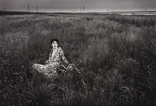 Хосоэ — крупнейший японский фотохудожник XX века. Центральной темой его творчества стало человеческое тело — через портреты Хосоэ пытается показать душевные терзания объекта. В 1963 году он для серии «Наказание розами» фотографировал обнаженным писателя Юкио Мисиму: эта серия, в которой четко прослеживаются садомазохистические мотивы, принесла Хосоэ славу радикального фотографа. Для серии «Симмон: личный пейзаж» Хосоэ снимал перформанс Симона Ёцуя, актера легендарной андерграундной театральной группы Jokyo Gekijo.