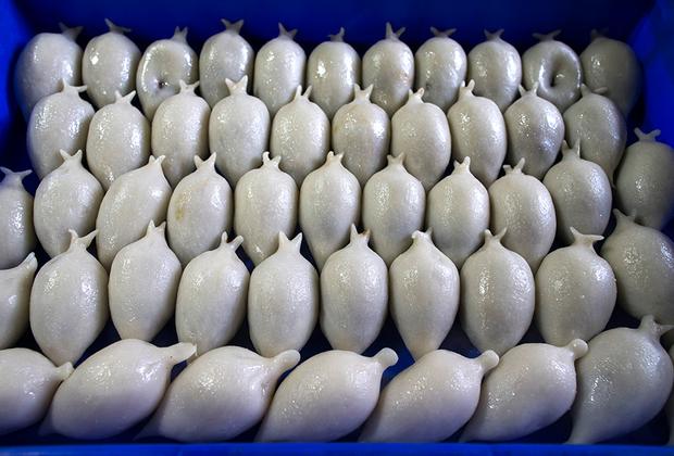 Во многих странах популярны пирожки из пресного теста, напоминающие русские пельмени. Например, в Непале готовят йомари — пирожки из рисовой муки со сладкой начинкой. Это национальное блюдо неварцев — народа живущего в долине Катманду. Изначально эти пирожки готовили для праздника Йомари-Пунхи, но сейчас они стали настолько популярны, что продаются весь год по цене около 60 центов за штуку.