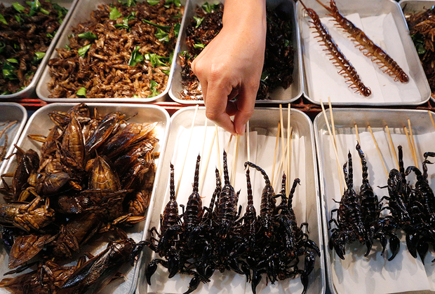 Улица Каосан Роуд в Бангкоке известна своим стритфудом. Здесь можно найти почти все распространенные в Таиланде уличные блюда, но самые популярные — свежие фрукты и жареные насекомые. Тараканы, сороконожки, скорпионы и жуки в голодные годы были пищей многих тайцев, но сейчас насекомые — скорее развлечение для туристов. По вкусу они больше всего напоминают жареные креветки.