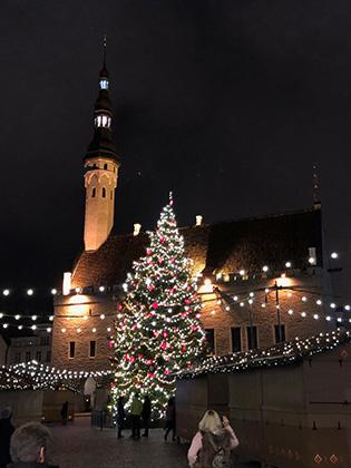 Уже в начале декабря центр Таллина был украшен иллюминацией, на центральной поставили елку и устроили рождественский базар. С Московским размахом, конечно, не сравнить, но и безвкусия удалось избежать.
