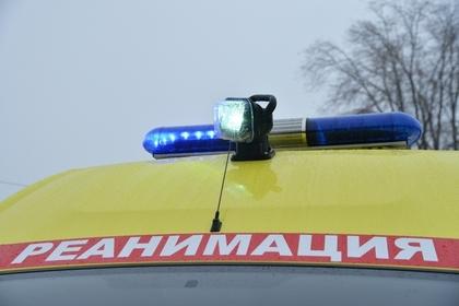 Россиянин перепутал автомобиль с лосем и застрелил егеря