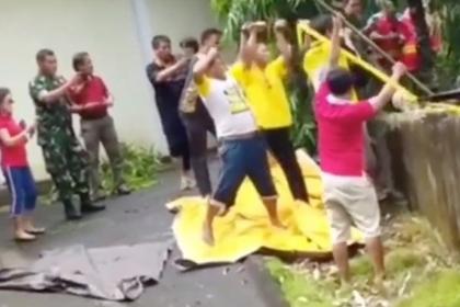 ВИндонезии крокодил заживо сожрал женщину-биолога