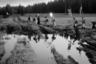 Маршрут крестного хода проходит через села Макарье, Бобино, Загарье, Монастырское, Горохово, Медяны и Филейское. Для местных жителей это главное событие в году. Нормальных дорог тут нет, и пробраться порой можно лишь пешком.  <br><br> В каждом из населенных пунктов путники проводят молебны, в некоторых утренние и вечерние службы.