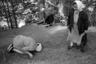 Великорецкий крестный ход проводится в честь чудесного обретения одноименной иконы Николая Чудотворца. Вот что говорится об этом событии в предании: <br><br> «Некоторый благоговейный муж, проходя по домашней потребности близ Великой реки, увидел в лесу, в стороне от своего пути, свет как бы от множества горящих свечей, остановился в испуге, но от страха не решился подойти к таинственному месту и пошел дальше по своему делу. Когда же возвращался домой, снова на том же месте увидел сияние светозарных лучей, почувствовал непреодолимое желание подойти к тому месту и, осенив себя крестным знамением, пробрался через лесную чащу и увидел там у небольшого источника образ Святителя Николая, свет же скрылся». <br><br> Первым чудом от иконы стало исцеление другого местного крестьянина, который не мог ходить.