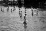 """Фотосъемка крестного хода порой приводила к конфликтным ситуациям.  <br><br> «Как-то верующие увидели фотографа, который снимал, как они купаются в купели, и пожаловались батюшке. И был потом запрет снимать в этом конкретном месте. Да и до сих пор в Горохово не благословляется ни видео-, ни фотосъемка», — рассказывает Алексей. <br><br> «У меня маленькая """"лейка"""" и стиль съемки такой, что не раздражает других», — говорит фотограф."""