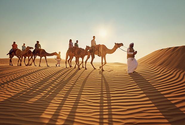 Сафари на верблюдах — это увлекательное путешествие по пустыне в составе традиционного каравана. Этот вид развлечений считается самым оригинальным способом познакомиться с жизнью бедуинских путешественников.
