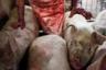 «В мясной промышленности знают, какой эффект могут произвести фотографии замученных животных, — говорит фотограф. — Чтобы такие кадры не увидели свет, у них есть правила, запрещающие проносить в цеха фотокамеры». По его словам, особенно трудно было попасть в бойни, где убивают лошадей.