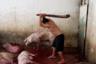 Рабочий готовится оглушить свинью на скотобойне в городе Арриага. Потом еще живое, но обездвиженное животное оставят истекать кровью. Хотя такой метод убийства запрещен, его все равно применяют. «Законы о защите животных в какой-то степени облегчают страдания, но куда меньше, чем людям кажется», — говорит Гармендиа.