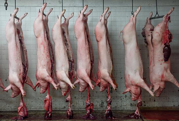 Свиные туши, приготовленные для отправки на продажу со скотобойни в городе Куэрнавака в мексиканском штате Морелос.