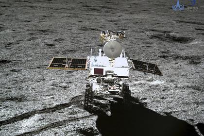 Первое в истории растение на Луне умерло