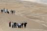 Найти нормальное место и понаблюдать за пролетающими в песках машинами — вот задача, которую пытаются решить немногочисленные зрители. На дистанцию они приходят подготовленными: многие тащат на спинах собственные стулья.