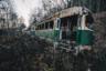 Кладбище трамваев в Пенсильвании, США. Чудаковатый американец собирал необычную коллекцию, которая сейчас разрушается под открытым небом, зарастая кустами и деревьями.