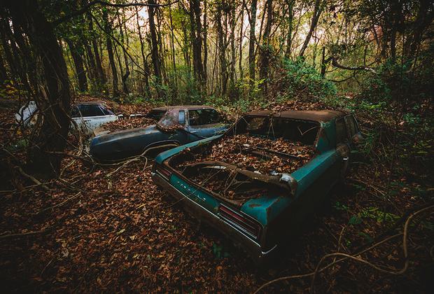 Самое известное кладбище автомобилей в штате Джорджия, США. Здесь находится около четырех тысяч автомобилей, которые постепенно растворяются в лесу.