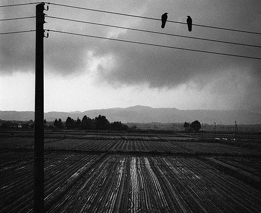 Сегодня его работы выставлены в Лондоне, Хьюстоне, Лос-Анджелесе, Париже, Амстердаме, Стокгольме и, конечно, в его родном городе. В 2004 году Анри Картье-Брессон, французский мастер реалистичной фотографии XX века, назвал Саммаллахти одним из своих любимых авторов.
