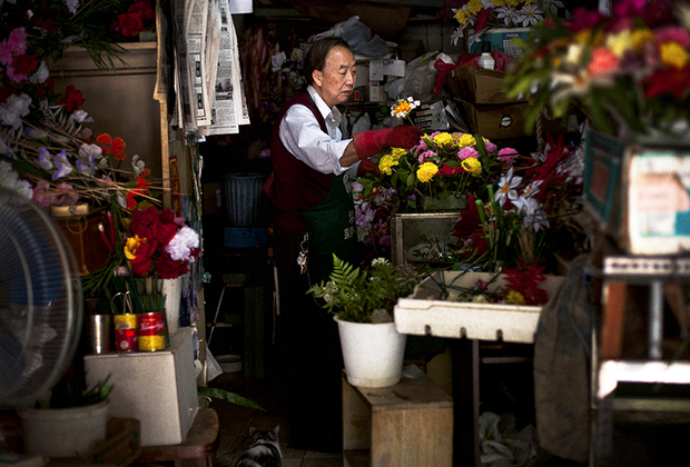 Фотограф Ань Жун Сюй родился и вырос в нью-йоркском Чайна-тауне, но относится к своим героям куда более отстраненно. Главная тематика его работ — исследование пересечения «двух культур, иногда разительно отличающихся друг от друга».
