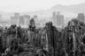 Француженка Кароль Парья показала единство природы и техногенного в одноименной работе. Каменный лес в южном Китае состоит из множества каменистых пиков, которым ветер и осадки придали причудливый вид. На заднем плане видны горы, которые также создавались миллионы лет. А между ними высятся небоскребы, появившиеся в последние десятилетия. Похожие друг на друга эти природные и техногенные произведения как бы находятся в молчаливом диалоге.
