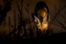 «Арабская красная лиса» —фотография Мсаеда аль Гариба из Кувейта претендовала на призы в категории «Живой мир и дикая природа». Арабская красная лиса (Vulpes vulpes arabica) —это подвид красной лисы, характерный для пустынь Аравийского полуострова. Сейчас красные лисы проживают практически по всей Аравии от прибрежных городов до гор и пустынь в глубине полуострова.