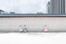 Фотография «Яркий менуэт» итальянца Алессандро Дзанони сделана рядом с главными воротами дворца Кёнбоккун в Сеуле. Древние постройки окружены магазинами, в которых можно купить или взять в аренду традиционные корейские костюмы. Вход во дворец для людей в исторической одежде бесплатный. Этот снимок подчеркивает контрасты быстро меняющегося города, в котором традиции и современность часто пересекаются.