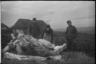Забой быка для продовольственного снабжения немецких солдат. Украина, 1941 год.